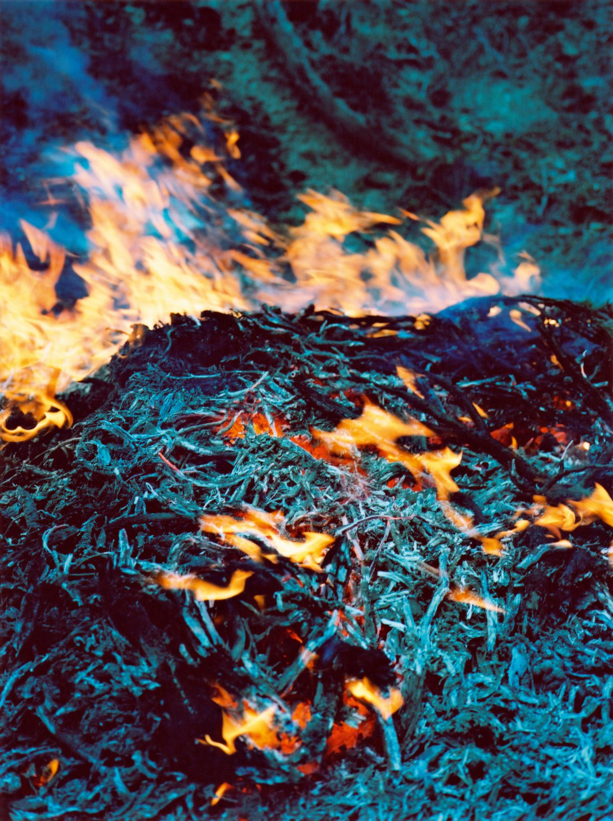 Fire, 2013, Mustang (Nepal) from the series Dzogchen  © Vincent Delbrouck, courtesy of STIEGLITZ19.
