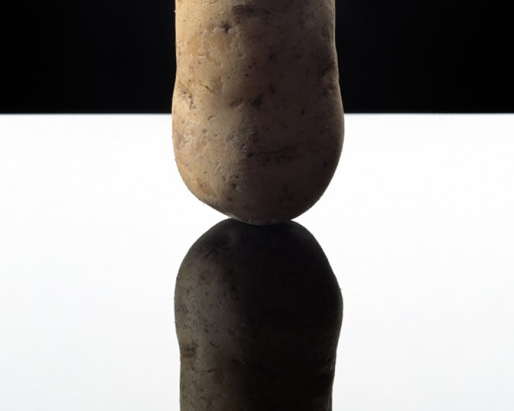 Blommers & Schumm: Potato Model