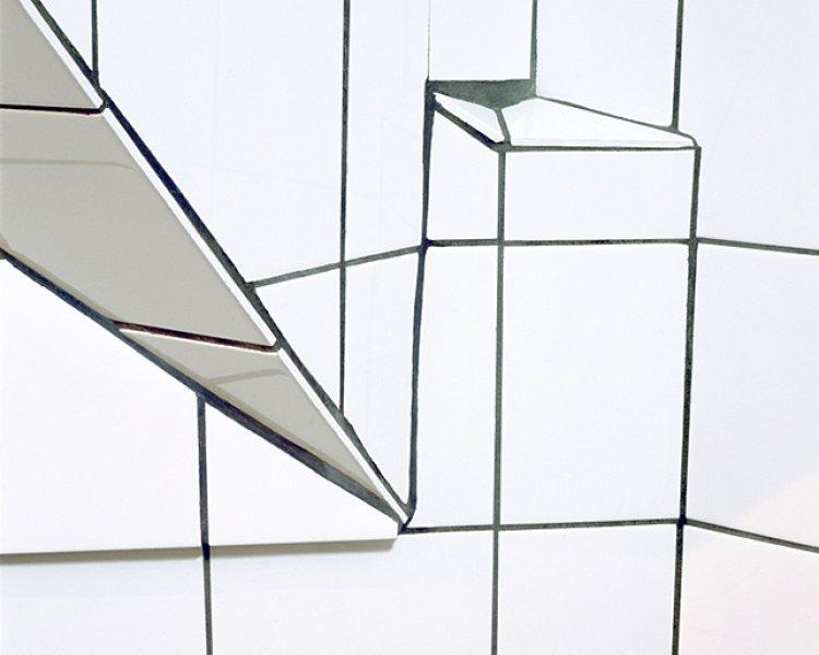Marnix Goossens: Plasticized nature