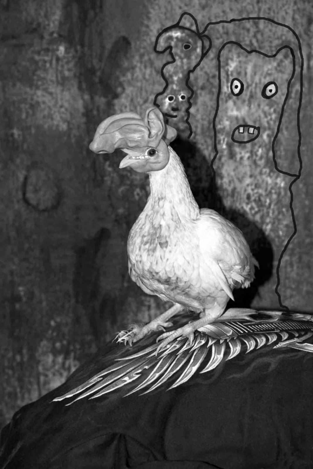 Chicken on Back, 2016 © Roger Ballen & Asger Carlsen