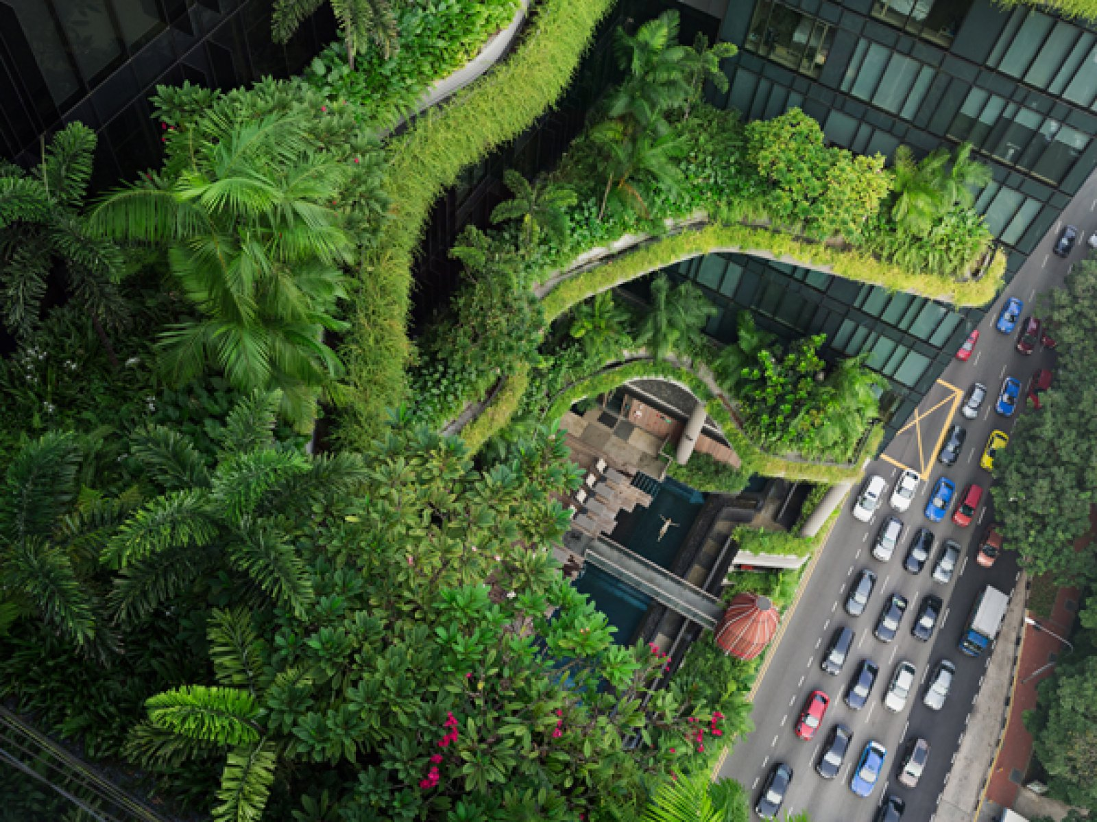 Esme zwemmend, Parkroyal on Pickering, Singapore © Lucas Foglia / Courtesy of Michael Hoppen Gallery