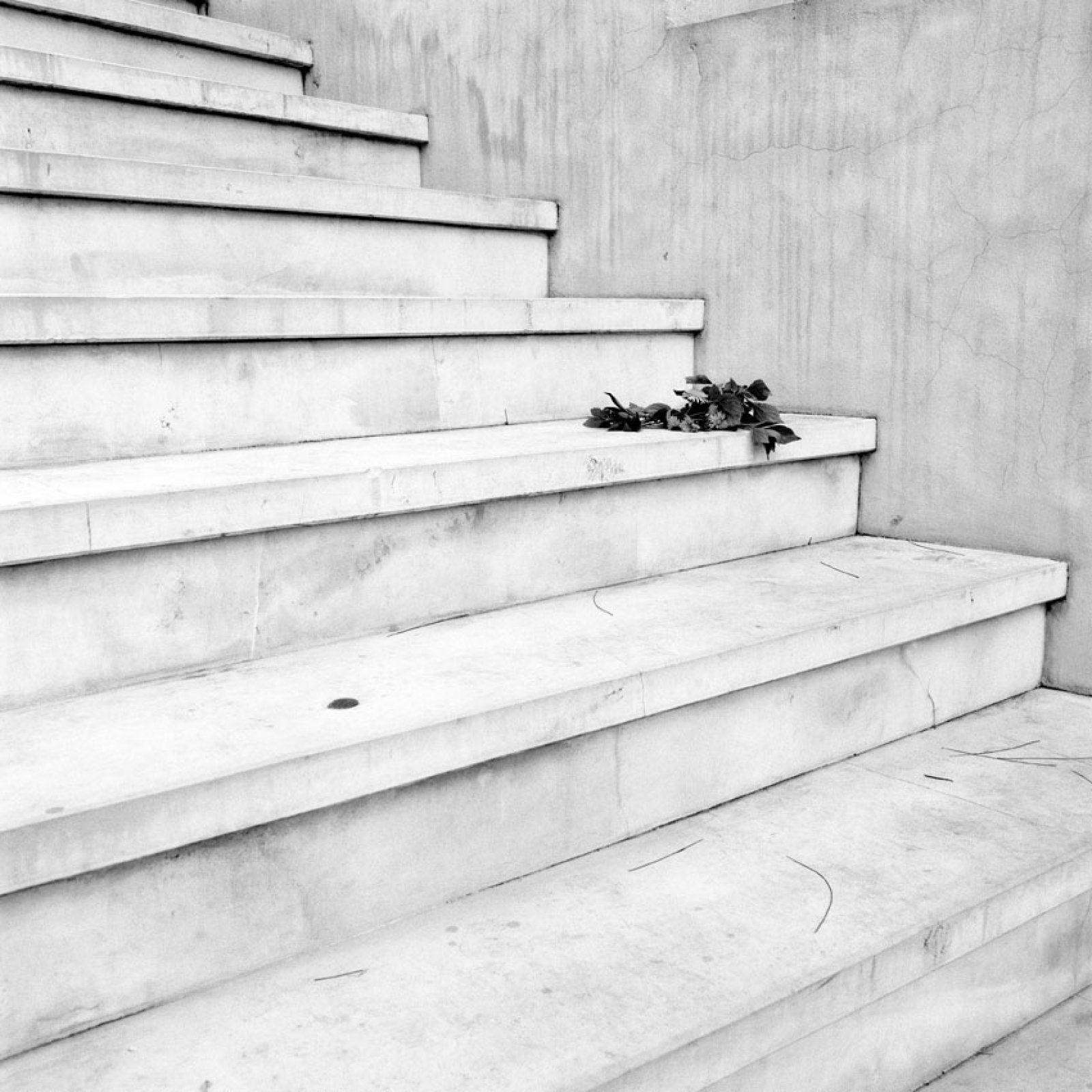 From the series Memento, 2013 01 ©  Lara Dhondt