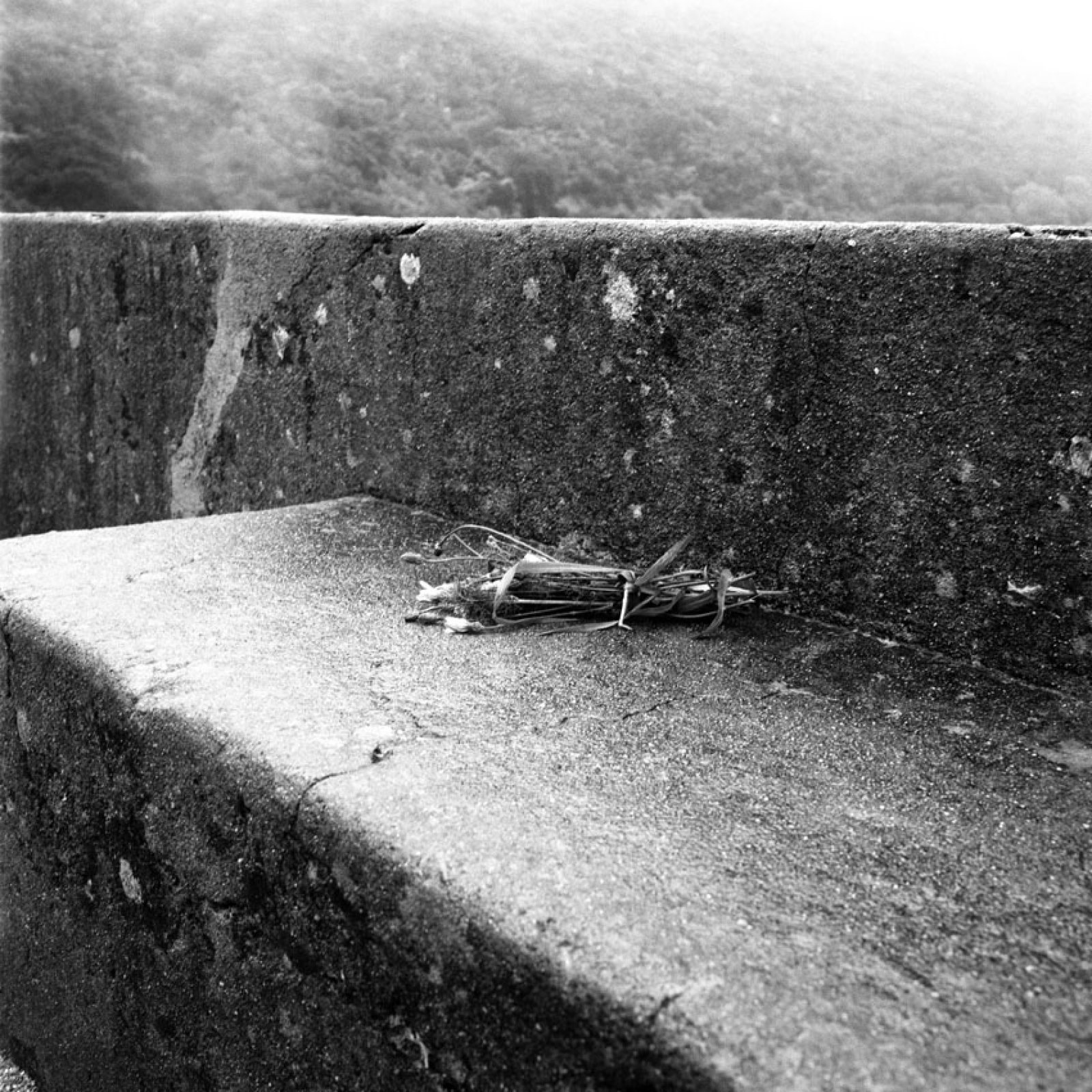 From the series Memento, 2013 03 ©  Lara Dhondt
