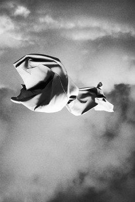 Gerrit Rietveld Academie - The Graduation Show 17 September - 1 November 2020